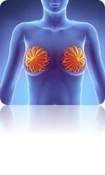 Erkrankungen der Brust